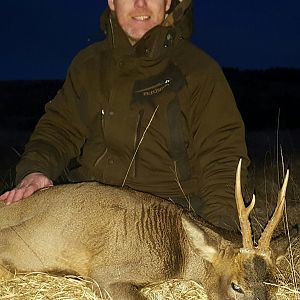 First roe buck for a mate.