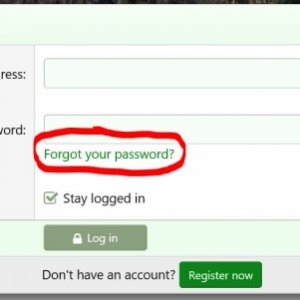 password3.jpg