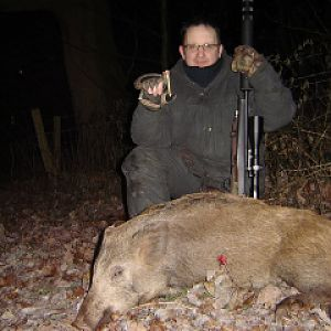 Another Herefordshire boar with the .375 H&H